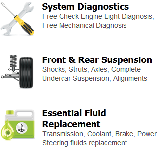 System Diagnostics, Front & Rear Suspension, Essential Fluid Replacement